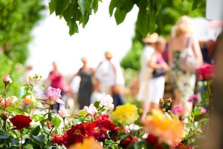 Im Schlosspark mit Kaiser Franz: Die Gartenmanie der Habsburger