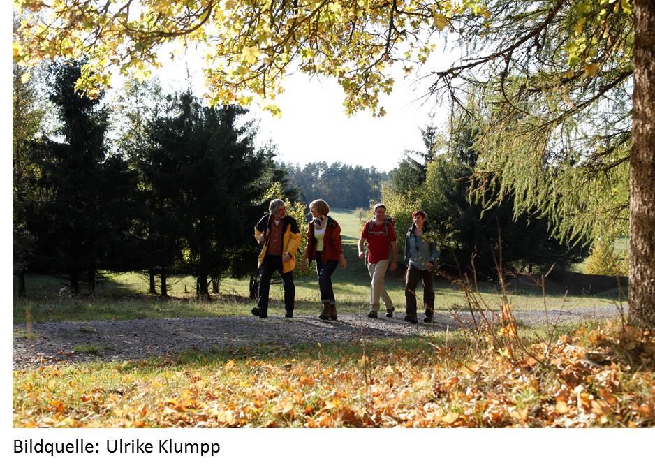 Pilz-Führerschein & Kräuterexkursion im Nördlichen Schwarzwald