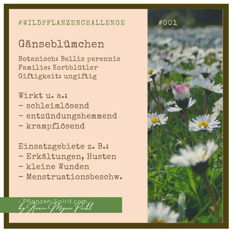 Wildpflanzen-Challenge 365