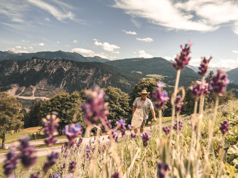 Ein Lavendelbauer schafft in den Salzburger Bergen ein Stück Provence