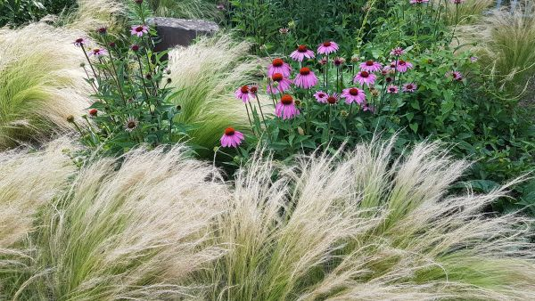Toskana oder Prärie? Urlaubsfeeling im eigenen Garten